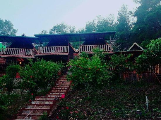 Olimpos Otantik Ağaç Evleri